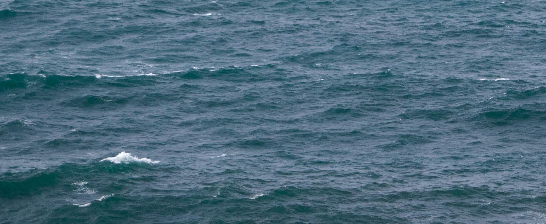 IBERNOR _ Contratación y colocación de gente de mar - Valores